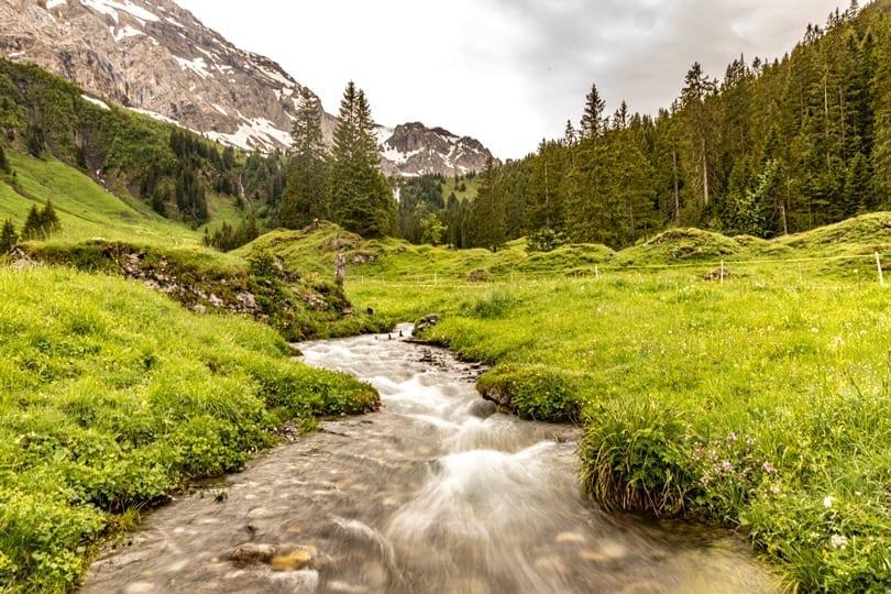 Der Bütschibach schlängelt sich durch die Alplandschaft am VogellisiBerg.
