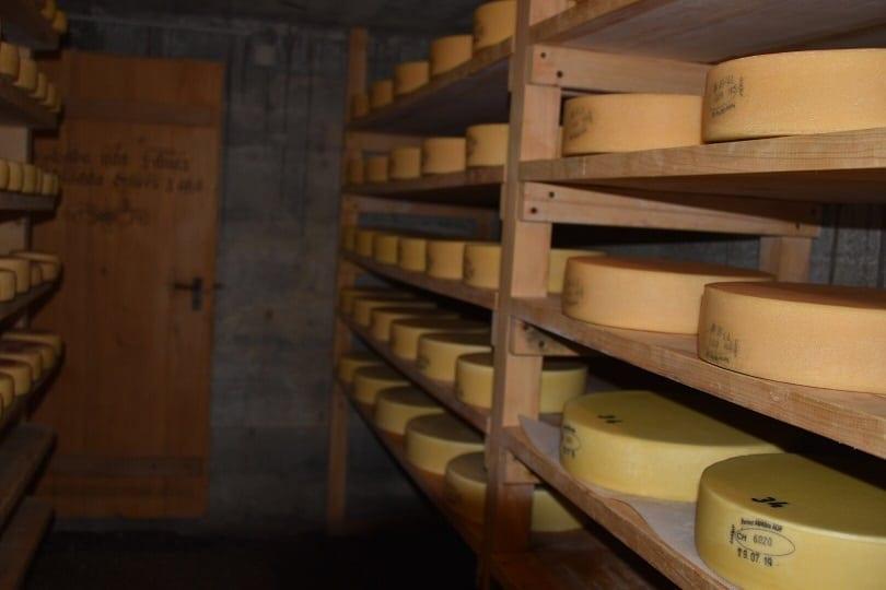 Käse so weit das Auge reicht. Probiere die Spezialitäten vom VogellisiBerg in Adelboden